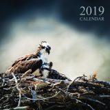 2019_calendar_12x12